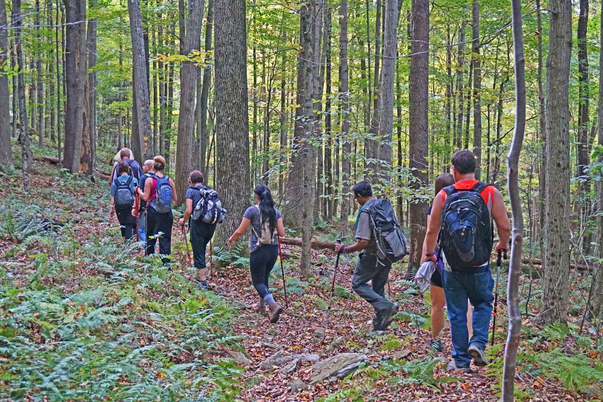 Group hiking at Worlds End State Park.