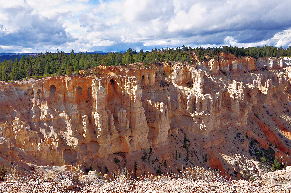 Hoodoos in the making at Bryce Canyon National Park.