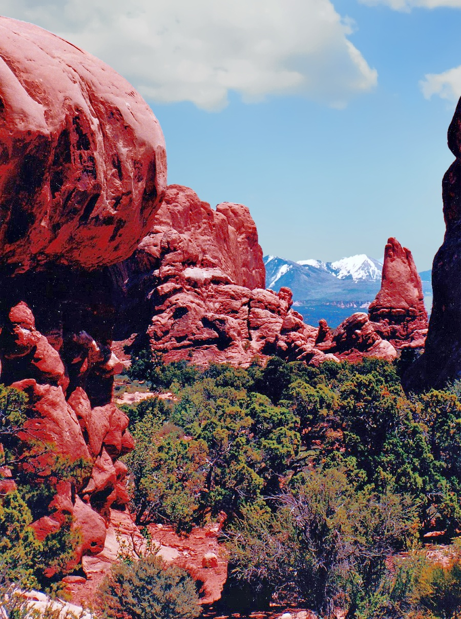 La Sal Mountains deliver a refreshing break from the heat of the desert.