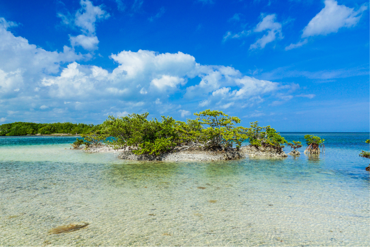 The best national parks to visit in winter. Biscayne National Park, Florida.