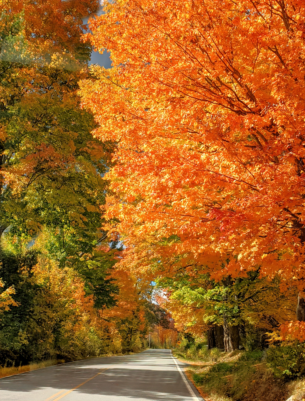 Visit the Adirondacks to enjoy stunning fall drives.