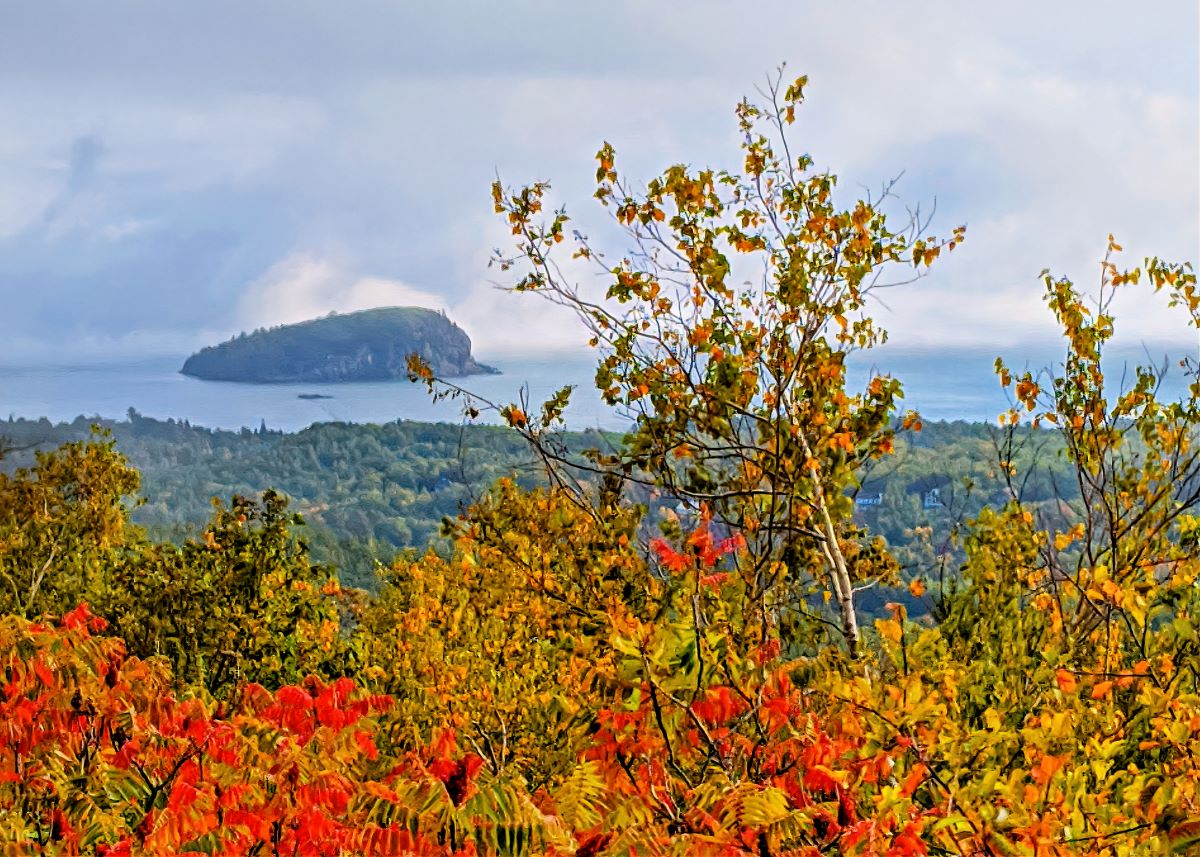 A fog in Acadia can block the views, but it could paint a beautiful scene.