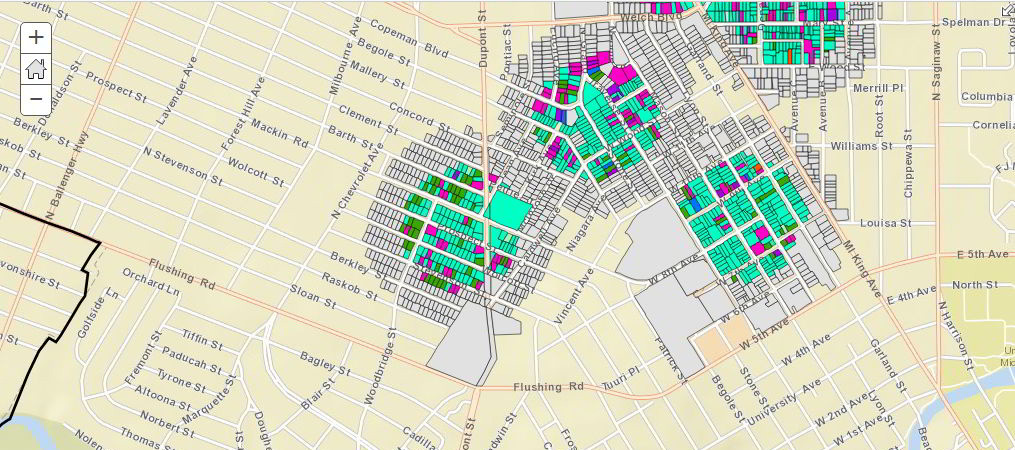 An image of a part of our survey map in ArcGIS Collector