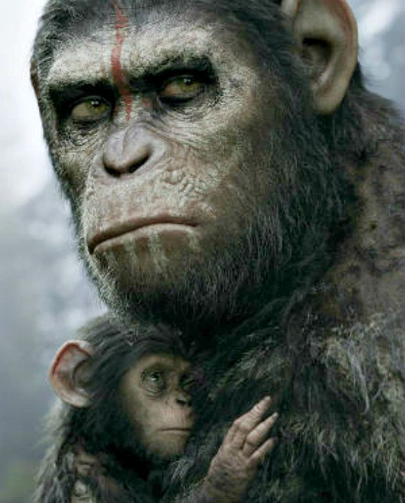 Dawn_of_the_Planet_of_the_Apes 2