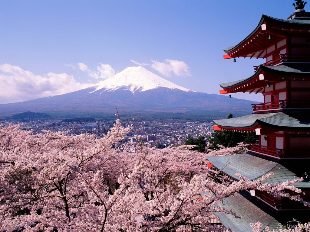 view of Mt. Fuji