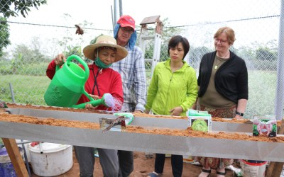 Hydroponics: A Solution for Suburban Farmers