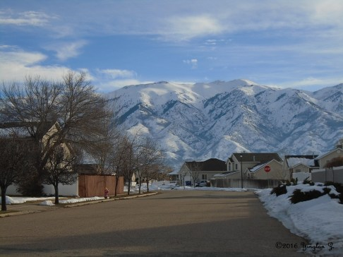 Snowy Mountains in January