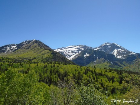 Lovely snow-capped mountains in June