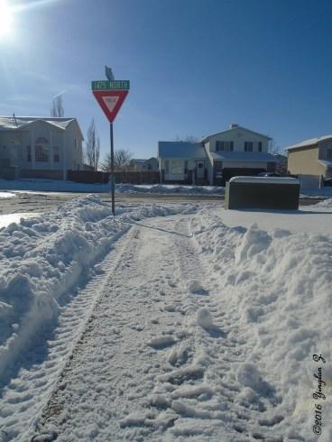 snow-path-1