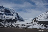 Columbia Icefield (from afar)