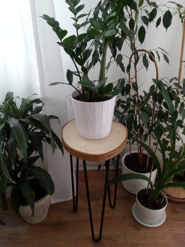 09 diy stolik z plastra drewna na trzech nóżkach hairpin legs podstawka pod kwiatka kawowy nocny pomocnik diy do it yourself jak zrobić