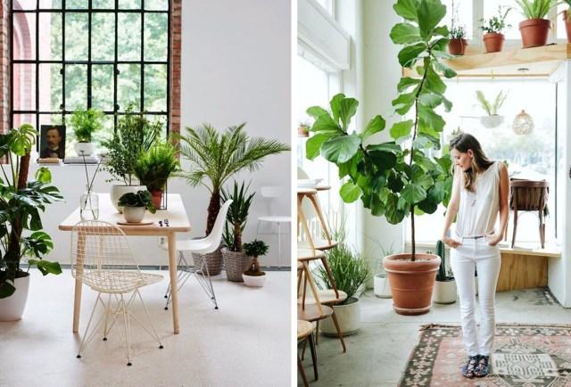 46 trend botaniczny architektura projektowanie wnętrz
