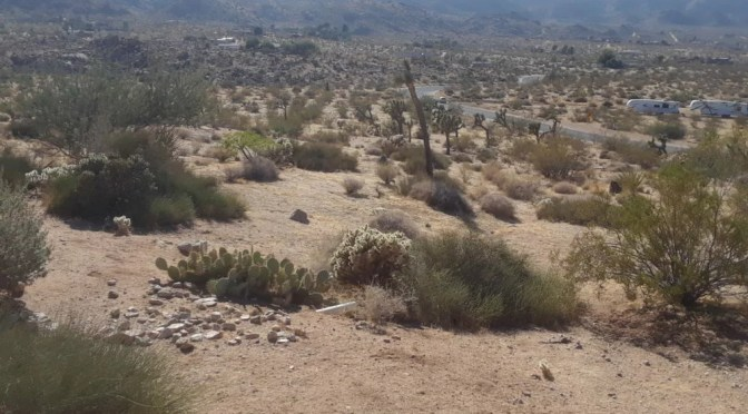 JOSHUA TREE DEVELOPER RUNS AFOUL OF THE LAW AND THE NEIGHBORS