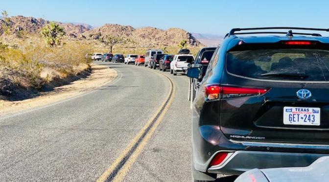 WITH VISITATION WAY UP, PREPARE FOR A VERY BUSY JOSHUA TREE NATIONAL PARK