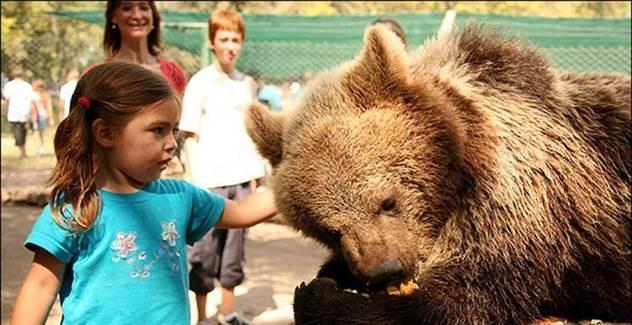 Самый опасный зоопарк в мире ( 37 фото )