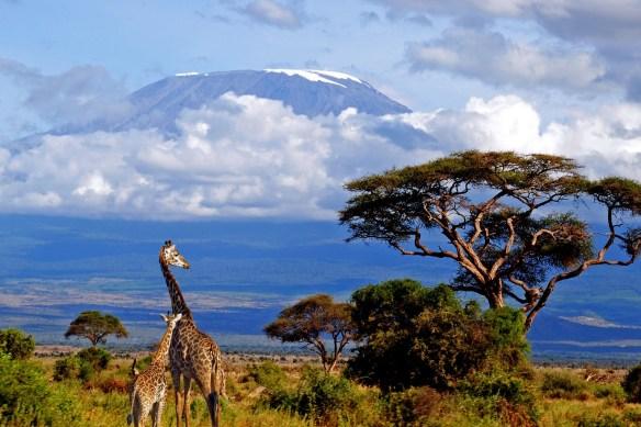 kilimanjaro-Tanzania