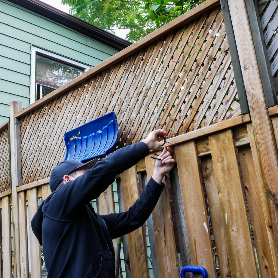 Yard Hangers (2 of 1)