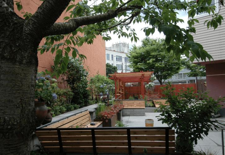 ichi-go ichi-e garden