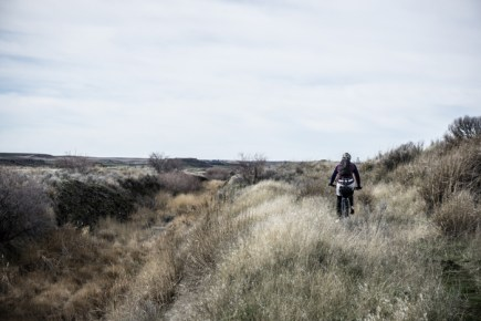 Cattle Track Singletrack above a Particularly Marshy Section