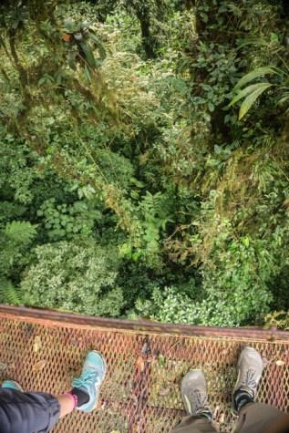 Suspension Bridge in the Monteverde Canopy