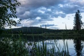 Evening Lakeside Views