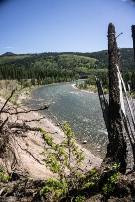 Scenic Overlook of the South Fork