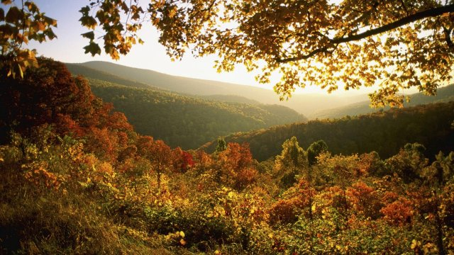 shenandoah-park-national-autumn-wallpapers-background