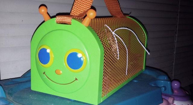 Mr. Caterpillar and Friends