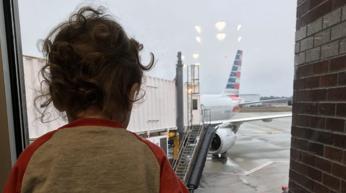 Phoenix looking at the airplane