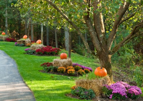 Don't Spook Buyers! Here Is Some Tasteful Halloween-Inspired Curb Appeal