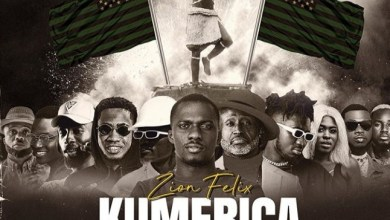 DOWNLOAD MP3: Zion Felix - Kumerica ft Reggie Rockstone, Ypee, Yaa Jackson and Many More