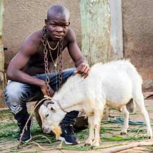 Ay Poyoo – Goat mp3 download