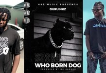 Check 5 most punchlines Guru spit on Kuami Eugene in his 'who born Dog' track