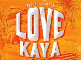 Free Instrumental - Love Kaya (Prod. by NelsonOnit)