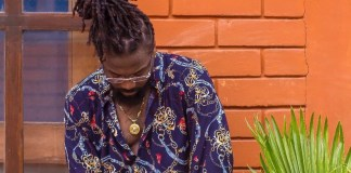 I've taken a backbench position to study 'current trends' – Samini Reveals