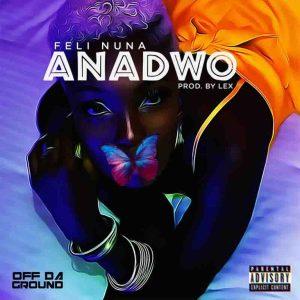 Feli Nuna – Anadwo (Prod. By Lex)