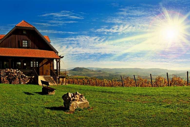 Croatia wine tour from Zagreb to Zagorje, Bolfan winery, Vinski Vrh restaurant, vineyard