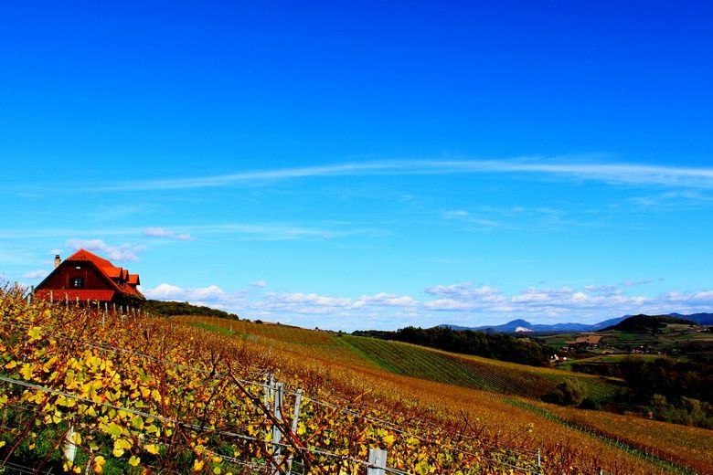 Croatia and Zagorje wine tour at Bolfan winery, vineyard, Restaurant Vinski Vrh