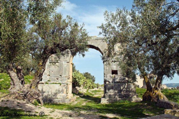 Arc de Sévère Alexandre