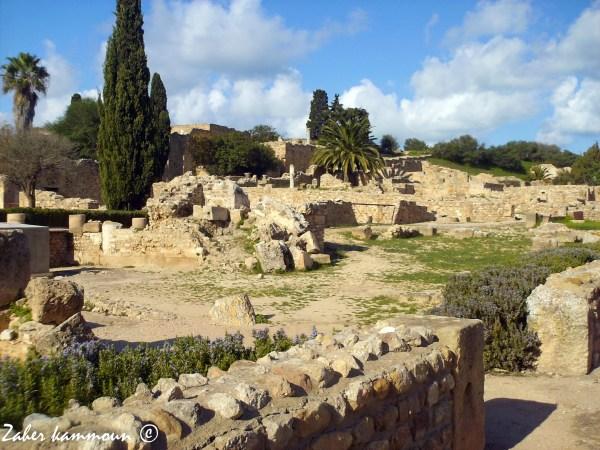 Les villas romaines