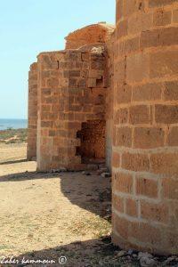 Fort Younga برج يونقا