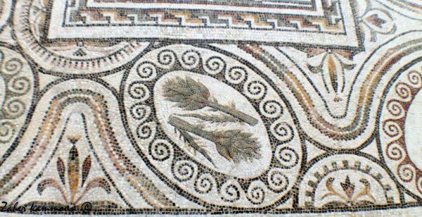 artichaut-mosaique-romaine-2