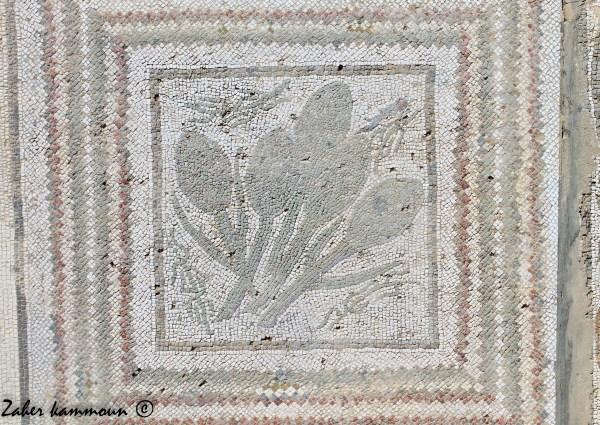 artichaut-mosaique-romaine