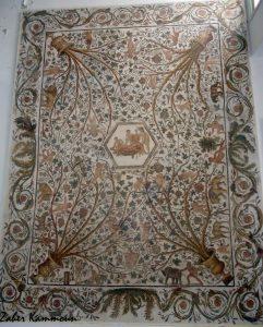 Musée el Jem متحف الجم