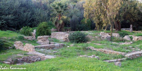 Musée paléochrétien Carthage المتحف المسيحي المبكر قرطاج