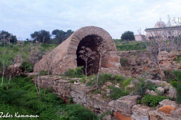 Rotonde Damous Karita Carthage