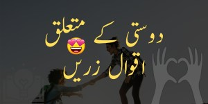 Friendship Quotes in Urdu and Hindi | Dosti Aqwal Zareen