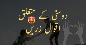 Friendship Quotes in Urdu and Hindi Dosti Aqwal Zareen