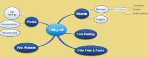 mind mapping-capture2