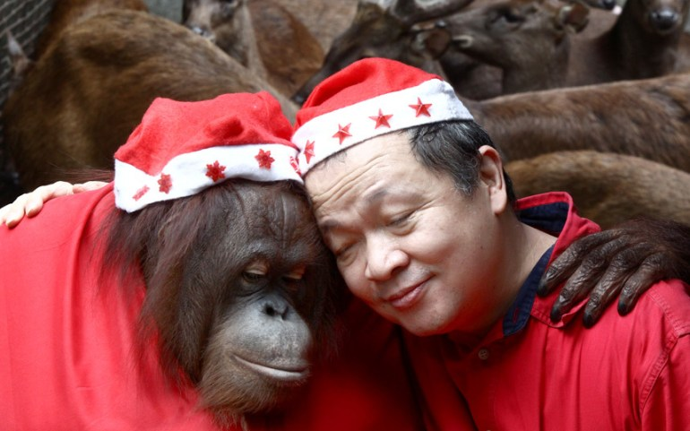 انسان غاب يرتدي قبعة سانتا ويحتضن ماني تانجو  صاحب  حديقة حيوان مالابون في الفلبين في احتفالات الكريسماس